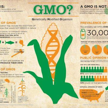 GMOs for Dummies
