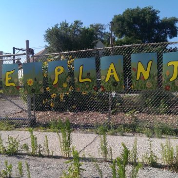 Urban Agriculture Forces Creativity